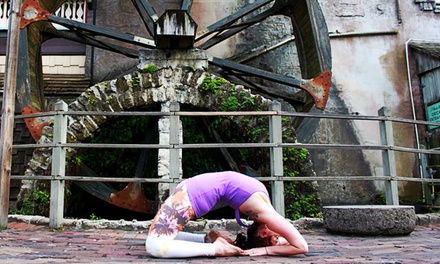 10 or 20 Classes at Hot House Yoga (73% Off)