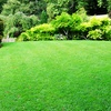 51% Off Lawn-Core Aeration from Turf Preserve