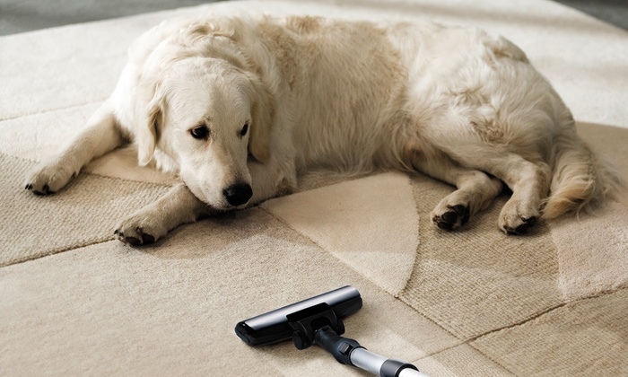 Acme ChemDry - Fresno: $99 for Carpet Cleaning and Pet Urine Removal for Two Rooms at Acme Chem-Dry ($209 Value)