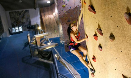 Indoor Rock Climbing at Hangar 18 Indoor Climbing Gyms (Up to 58% Off). Three Options Available.