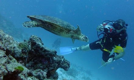 Scuba Diving Course with Extreme Water Sports