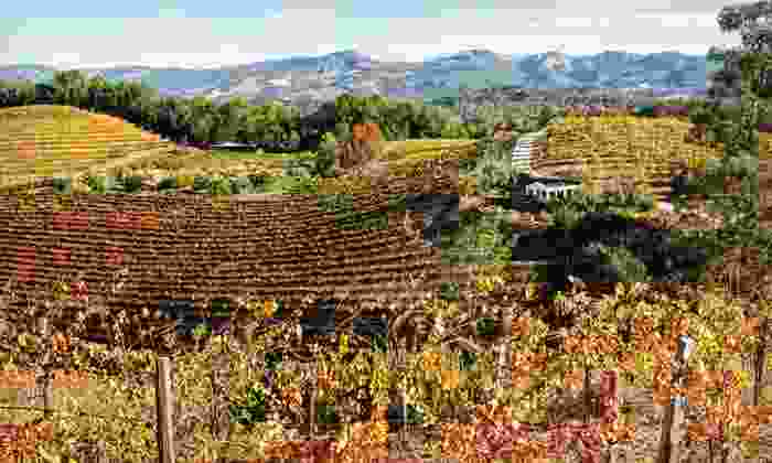 Jack London Lodge - Sonoma Valley, CA: One-Night Stay with State-Park Passes, Wine, and Breakfast at Jack London Lodge in Sonoma Valley, CA