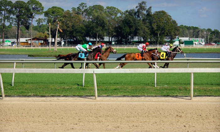 Tampa Bay Downs - Westchase: Group Outings at the Races with Betting and Food Vouchers for One, Two, Four, or Six at Tampa Bay Downs (Up to 57% Off)