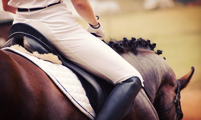 Louisa Nicholls Riding Instruction - Langley: Two or Four Group Horseback-Riding Lessons at Louisa Nicholls Riding Instruction (Up to 56% Off)