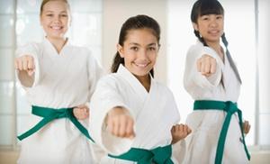 DeVito's TaeKwonDo Academy: $88 for $175 Worth of Martial-Arts Lessons at DeVito's TaeKwonDo Academy