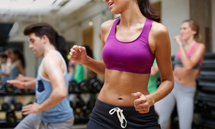 One Month of Unlimited Fitness Classes or 10 Fitness Classes at Titanium Fitness Center (Up to 66% Off)
