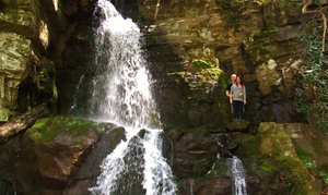 Hike The Smokys: Guided Smoky Mountain Group Hike for Two, or Romantic Hike for Two at Hike The Smokys (Up to 53% Off)
