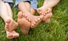 Dr. Green Services: $35 for Lawn Aeration of Up to 6,000 Square Feet from Dr. Green Services ($80 Value)
