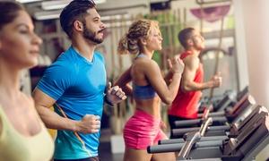 Power Zone: Miesięczny karnet open na siłownię (od 54,99 zł) z treningiem personalnym (129,99 zł) i więcej w Power Zone (do -50%)