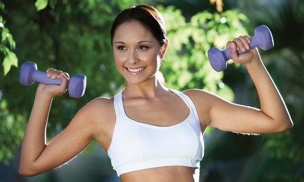 10 or 20 Classes at VO2 Max Boot Camp (Up to 82% Off)