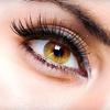 Up to 68% Off Set of Silk Eyelashes