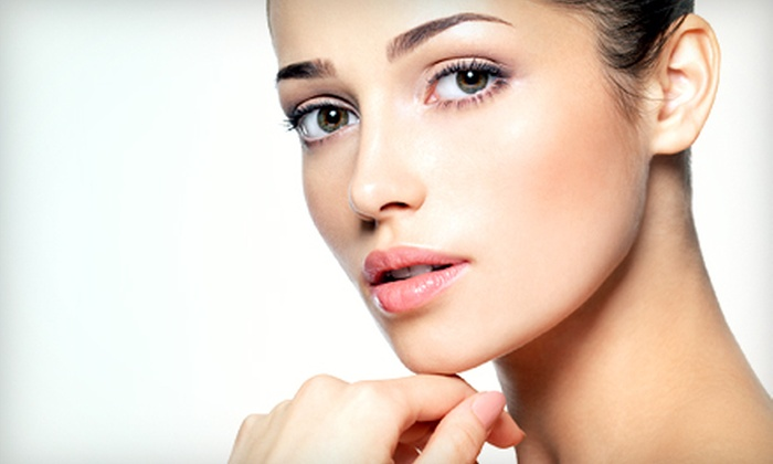 European Skin Care by Anna - Costa Mesa: Permanent-Eyebrow-Makeup Application with Option for Touchup at European Skin Care by Anna (Up to 56% Off)