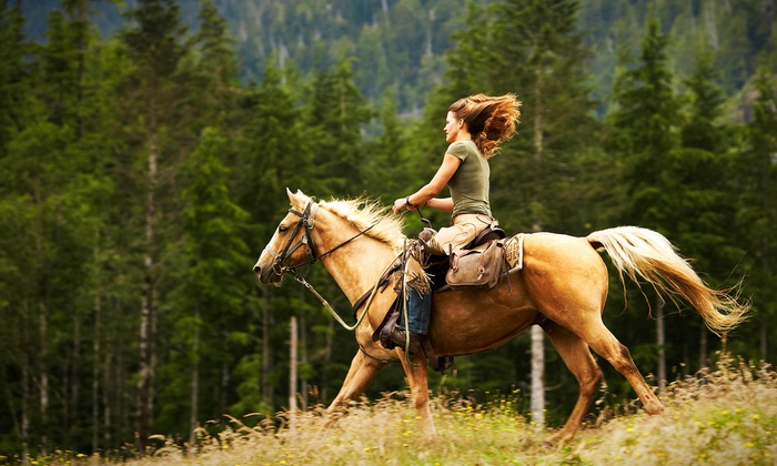 Marissa's Bit O' Luck Stable - Monroe: One or Two One-Hour Private Horseback-Riding Lessons at Marissa's Bit O' Luck Stable (47% Off)