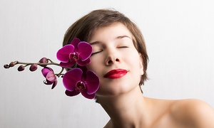 The Defining Line Salon: 45- or 60-Minute Salon Package at The Defining Line Salon (Up to 52% Off)