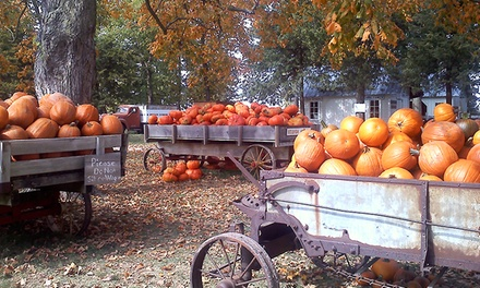 $20 for Admission for Four to Howell's Pumpkin Patch ($36 Value)