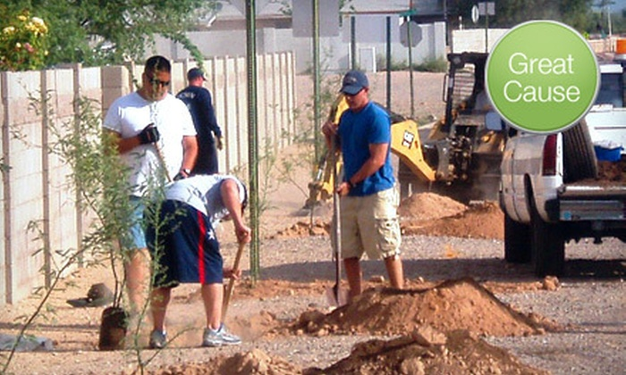 Tucson Clean & Beautiful, Inc./Trees for Tucson - Tucson: $10 Donation to Help Plant Trees