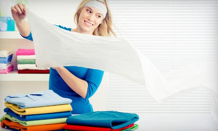 Suds Laundry Service - Pinckney: Comforter Cleaning or $10 for $20 Worth of Laundry Service at Suds Laundry Service
