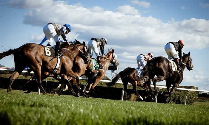 2014 Belmont Stakes Wine Festival - Northwest Berkeley: $50 for One Admission to 2014 Belmont Stakes Wine Festival on Saturday, June 7, at Golden Gate Fields ($86.51 Value)