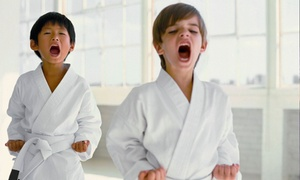 Go2Karate: 10 Martial-Arts Classes with a Uniform, or 16 Classes with a Uniform, Test, and Graduation Belt from Go2Karate (94% Off)