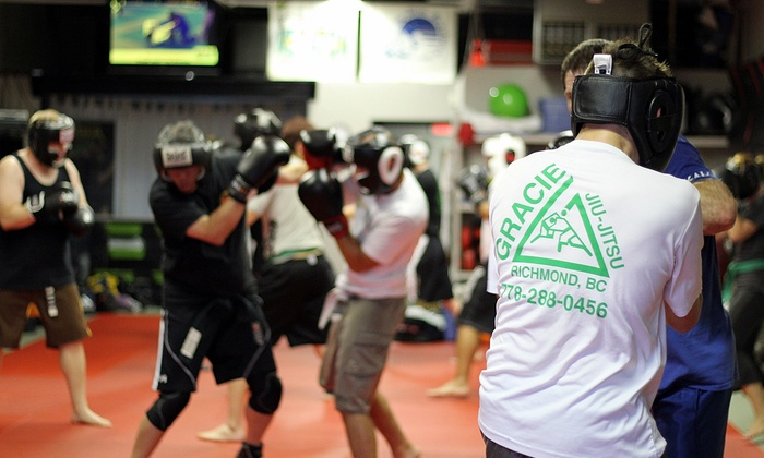 Premier Martial Arts - Shellmont: One Month of Unlimited Kids or Adults Martial Arts Classes at Premier Martial Arts (82% Off)