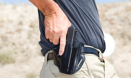 FourHour Conceal and Carry Course with Range Instruction for One or Two at Personal Gun Trainer (Up to 63% Off)