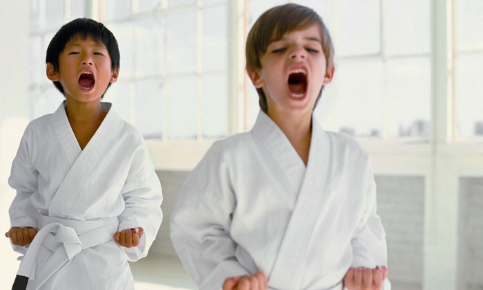 ShoDan Karate - West Warwick: One or Two Months of Traditional Okinawan Karate Classes at ShoDan Karate (Up to 83% Off)