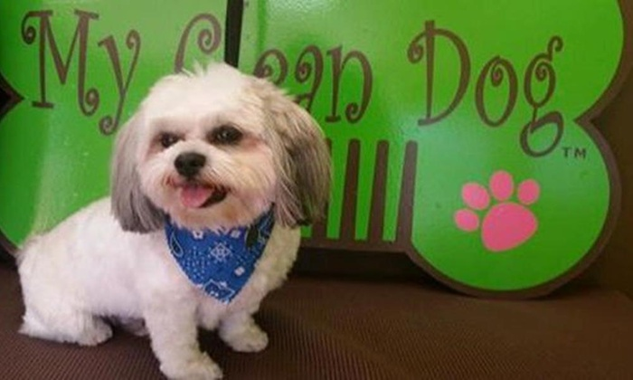 My Clean Dog - Southwest Area: Grooming Services from My Clean Dog (40% Off)
