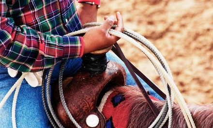 One or Two 60-Minute Private Horseback-Riding Lessons at RO-NO Ranch (Up to 61% Off)