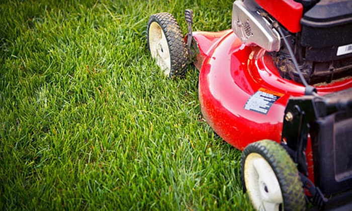 Champion LawnCare and Maintenance - Tallahassee: $29 for Up to a Half-Acre of Lawn-Care Service from Champion LawnCare and Maintenance (Up to $60 Value)
