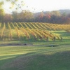 Up to 55% Off Picnic & Winery Tour for Two or Four