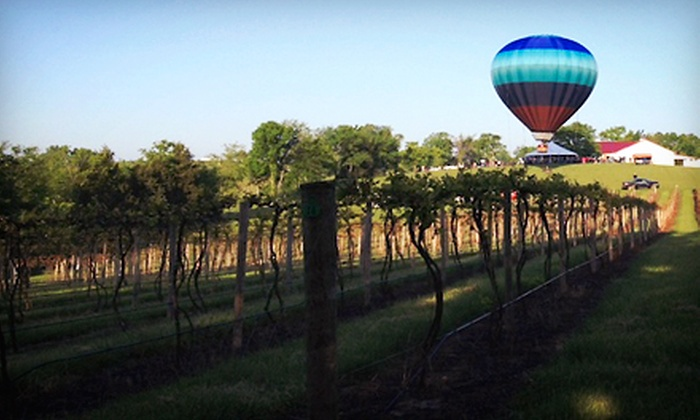 Noboleis Vineyards - Boone: Winery Tour with Tastings on May 25, June 14, or June 22, or $15 for $30 Worth of Food and Wine at Noboleis Vineyards
