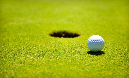 9-Hole Golf Outing with Rental Cart, Pizza, and Soda for Two or Four at Minnechaug Golf Course (Up to 54% Off)