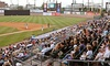 Bridgeport Bluefish - Ballpark at Harbor Yard: $250 for a Luxury Suite for Up to 25 People at a Bridgeport Bluefish Game at The Ballpark at Harbor Yard ($500 Value)