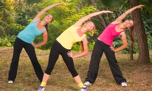 Fitness By Example: Four or Eight Weeks of Unlimited Indoor or Outdoor Boot Camp at Fitness by Example (Up to 88%Off)
