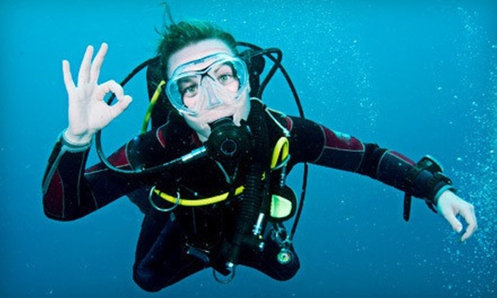 Pacific Wilderness - Central San Pedro: $249 for a Four-Day PADI Open-Water Scuba Certification in San Pedro from Pacific Wilderness ($500 Value)