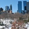 Up to 53% Off NYC Christmas Tour