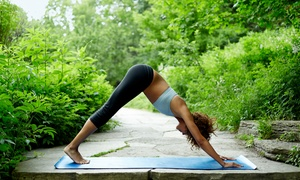 Yogi Plus Yoga: Five Yoga Classes at Yogi Plus Yoga (70% Off)