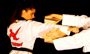 Lima Taekwondo & Martial Arts Academy: 5 or 10 Tae Kwon Do Classes at Lima Taekwondo & Martial Arts Academy (Up to 89% Off)