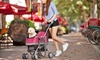 Pet Life All-Surface Convertible All-In-One Pet Stroller, Carrier, and Carseat: Pet Life All-Surface Convertible All-In-One Pet Stroller, Carrier, and Carseat
