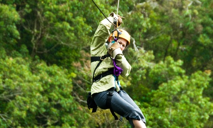 Zipline Canopy Tour for One or Two at Spring Mountain Adventures (Up to 52% Off)