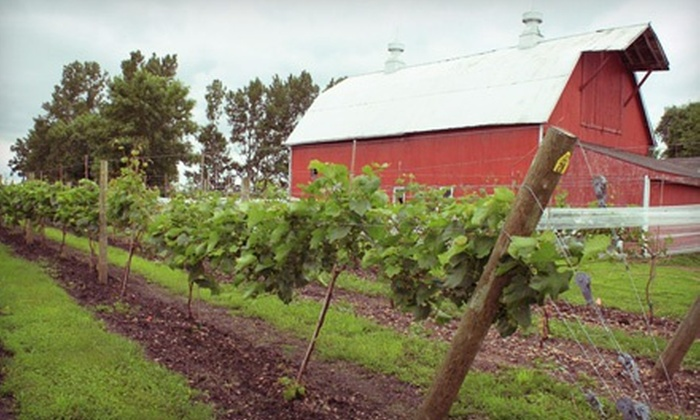 Next Chapter Vineyard - Montgomery: $145 for a Apple Picking and Winery Tour for Two from Next Chapter Vineyard ($300 Value). Six Dates Available.