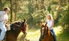 Equine Blvd. - Agawan: $65 for a Spring Horseback Trail Ride for Two from Equine Boulevard ($150 Value)