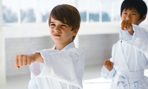 AKKA Karate USA: 10 or 20 Martial-Arts Classes at AKKA Karate USA (Up to 80% Off)