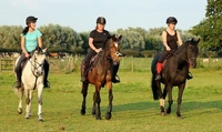 Introductory Horse Riding Lessons for One at Croft Riding Centre (up to 50% Off)