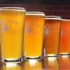 Craft-Beer Flights and Pints at Broken Bottle Brewery