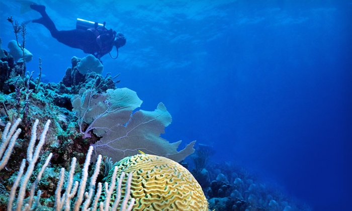 Deep Blue Resort - Honduras: Seven-Night Stay with Daily Meals and Scuba Diving at Deep Blue Resort in Honduras