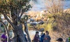 Llano Earth Art Fest - Canyon Ridge Springs: Admission for Two, Four, or Six at Llano Earth Art Fest (Up to 47% Off)