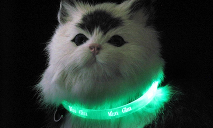 $12 for a Mhu Ghu LED Cat Collar ($39.99 Value). Four Colors and Three Sizes Available.
