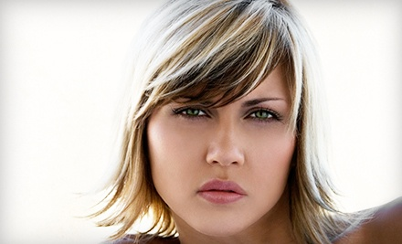 Single-Process Color or Full or Partial Highlights at Giani Hair Salon (Up to 52% Off)