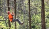 Lark Valley Zip Lines - French Lick: $59 for a Zipline Adventure for Two from Lark Valley Zip Lines ($118 Value)